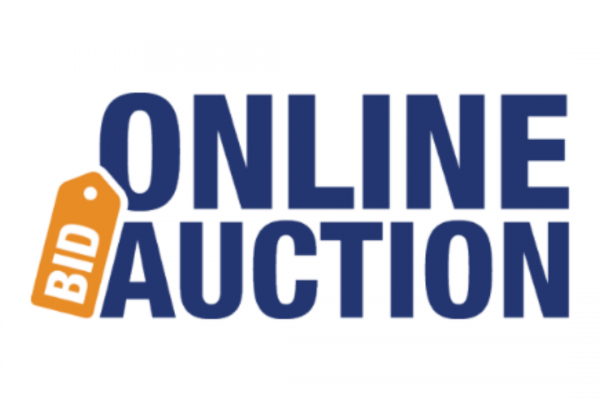 Virtual On-line Auction<br>Now in progress