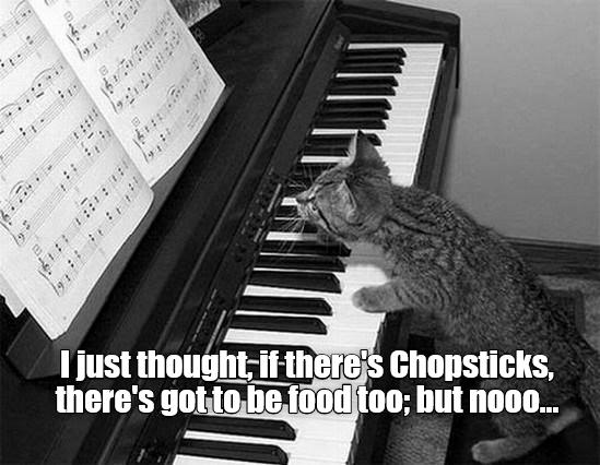 Keyboardist needed